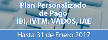 Pago IBI - IVTM - VADOS -IAE