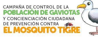 Campaña para controlar las Gaviotas y el Mosquito Tigre