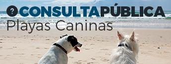 Consulta Pública Playas Caninas