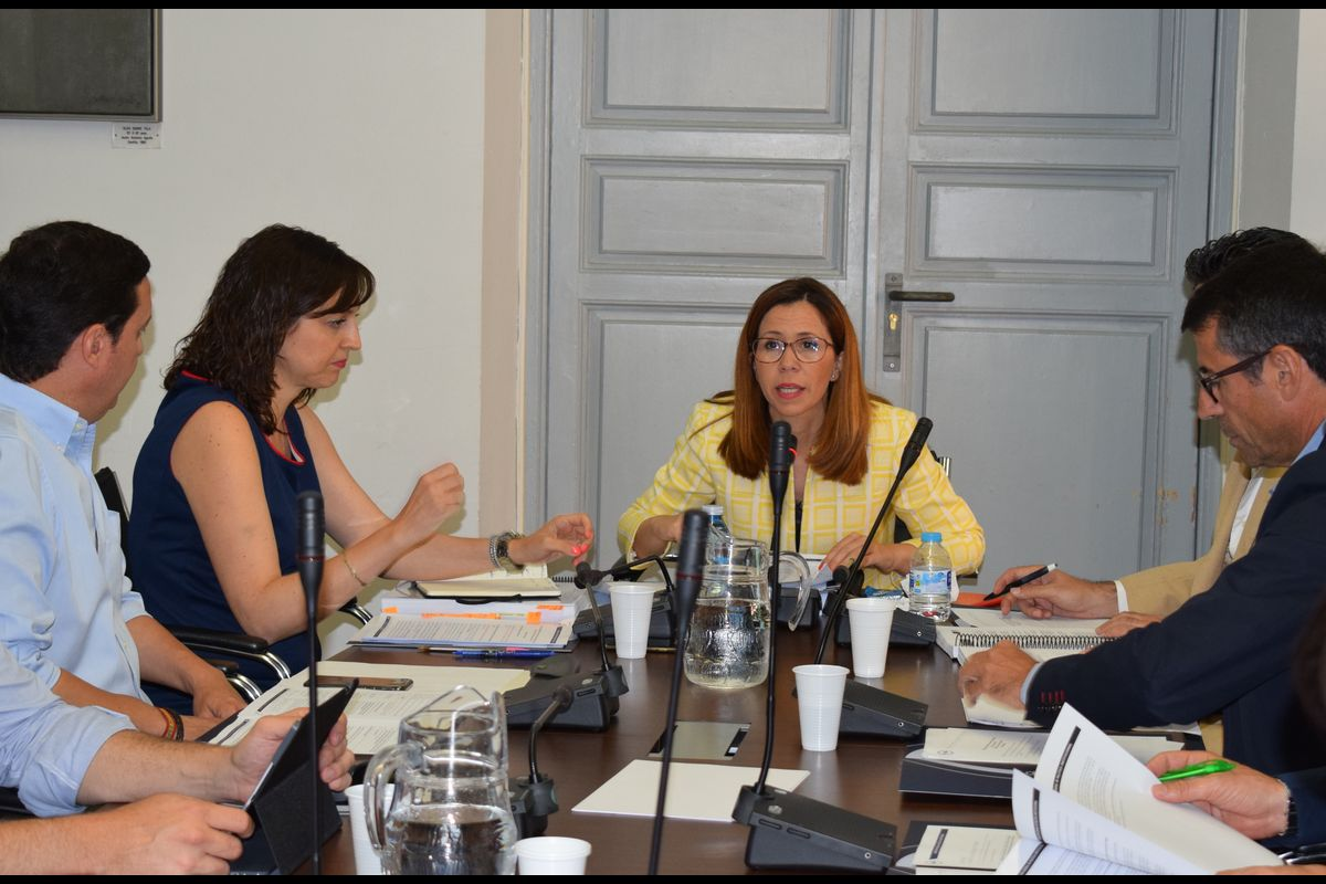 Ana Belén Castejçon presidiendo la Comisión de Empleo de la FEMP