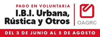 Pago en voluntaria. IBI, Urbana, Rústica y Otros