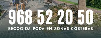 El Ayuntamiento habilita un número de teléfono para reforzar la recogida de restos vegetales en las zonas costeras de Cartagena