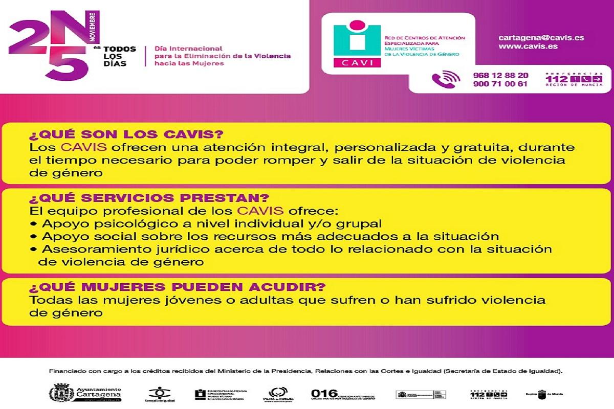 programa de ponencias online por el Día Internacional para la eliminación de la violencia hacia las mujeres