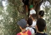 Pasando la bola, actividad bolos cartageneros en La Magdalena