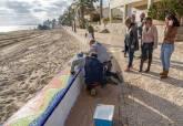 Los limpiaplayas retiran 175 toneladas de algas de las playas del Mar Menor sur