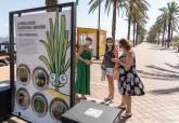 Exposición La Pandilla Salada, descubriendo el Mar Menor