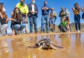 Diez tortugas bobas regresan a Calblanque tras un año criadas en cautividad