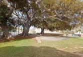 Protección de árboles monumentales para evitar caída de ramas